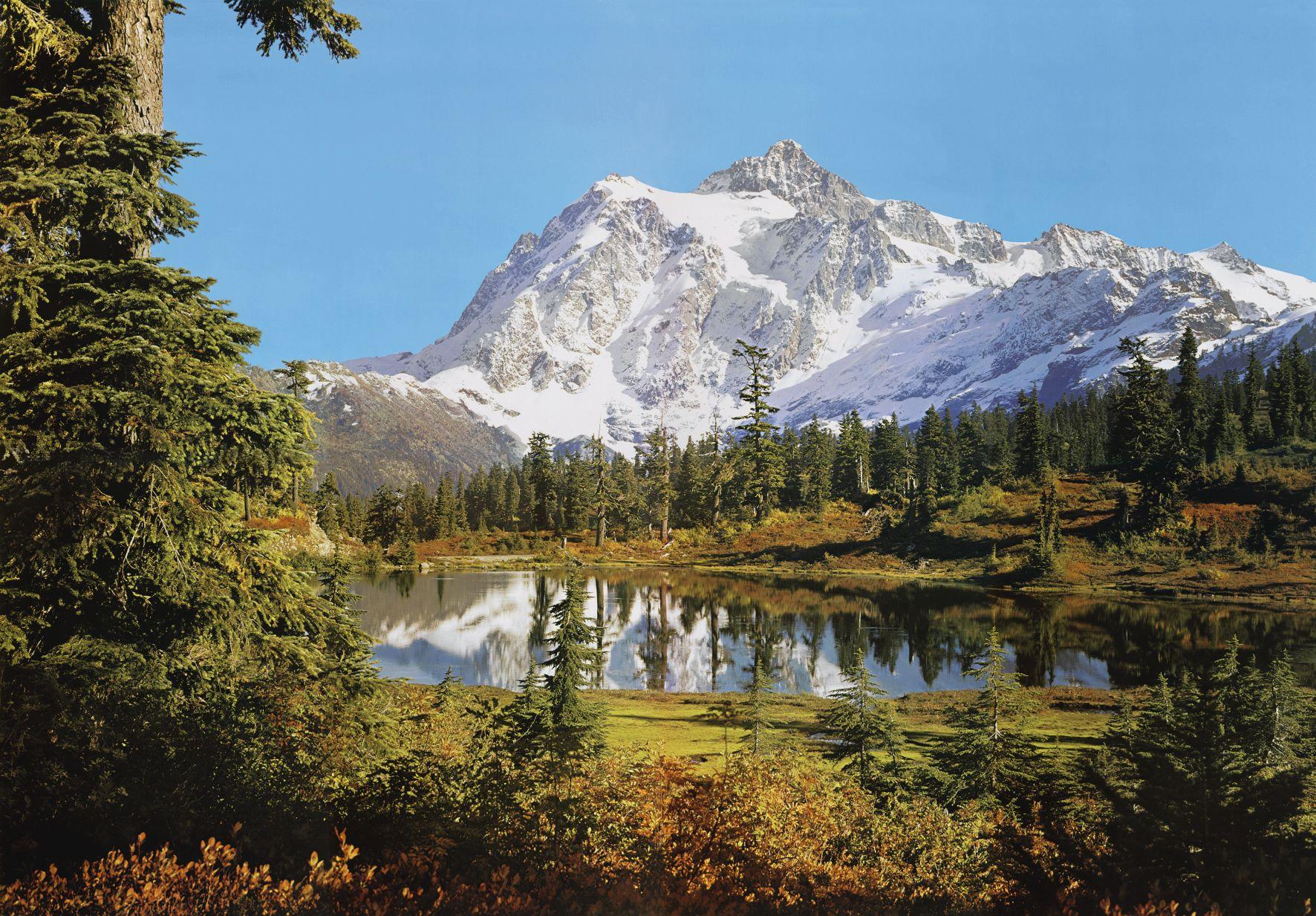 Fototapete 'Rocky Mountains' von Komar. Wald und Berge Größe 388 x 270 cm.